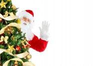 Mikołaj i choinka